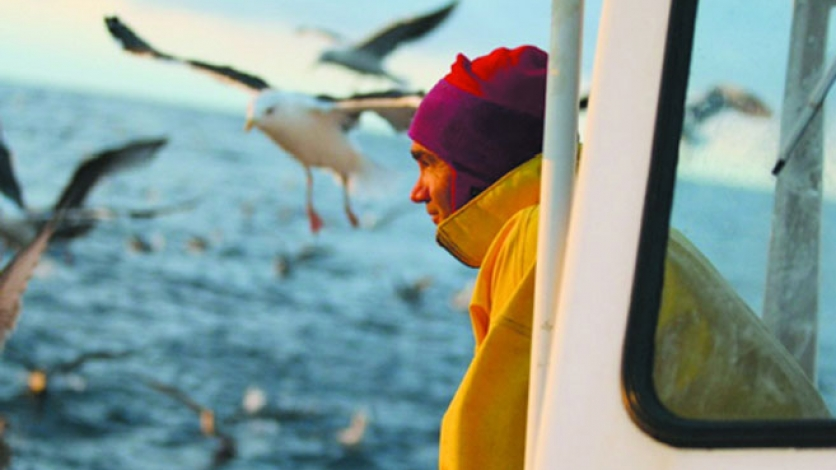 man looking out a seagulls as he is tub trawling on a boat