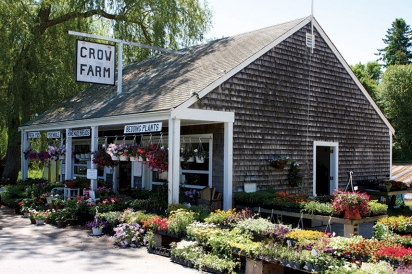Crow Farm is reminiscent of a roadside farm stand from long ago.