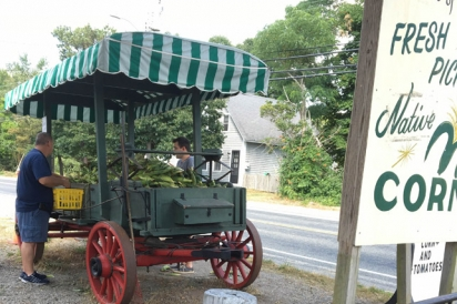 P&D Fruit is a seasonal farm stand perfect for picking up local corn, tomatoes and peaches.