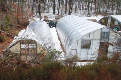 Damaged Greenhouses