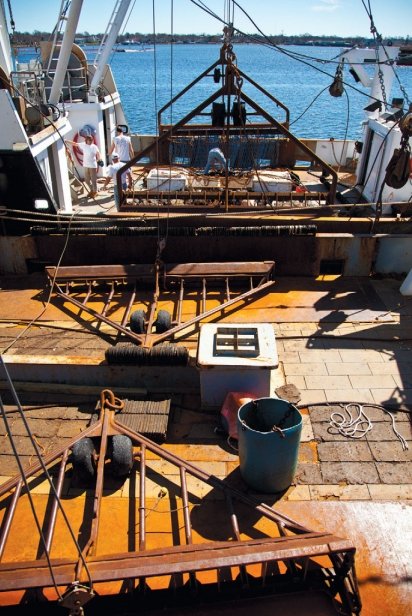 Interior of scallop dredge